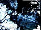 MET 01085 - Cross-Polarized Light