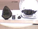 LAP02239