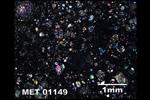 MET 01149 - Cross-Polarized Light