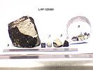 LAP03569