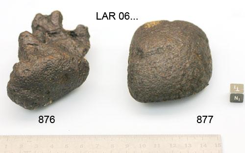 LAR 06877