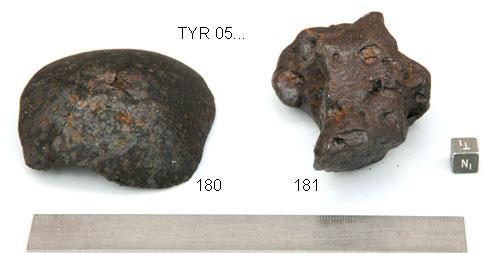 TYR 05181