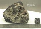 GRA98019