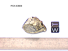 PCA02008