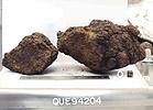 QUE94204