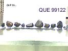 QUE99122