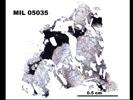 MIL 05035 - Plane-Polarized Light